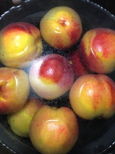 Peaches boiling in water to loosen the skins